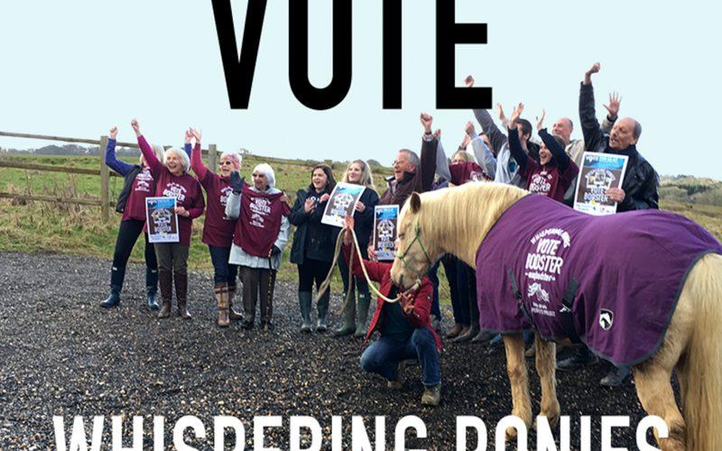 Vote-Whispering-Ponies