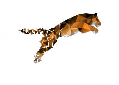 Website, GDPR page